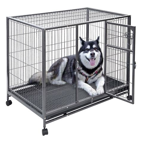 metal crate your can 39 t these heavy duty escape proof crates