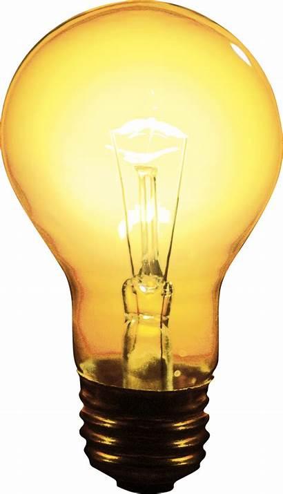 Lamp Transparent Lights Board