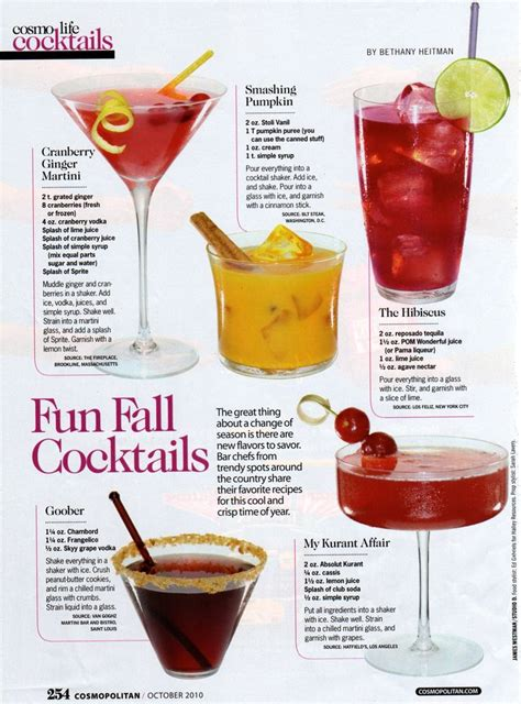 drink recipes fun fall cocktails thanks to the pilgrims pinterest