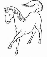 Horse Coloring Printable Pages Template Wild Templates Colouring Pdf sketch template