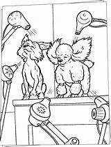 Coloring Pages Dog Salon Hair Dogs Beauty Grooming Printable Hellokids Sheets Truck Trimsalon Digging Paper Getdrawings Drawings Hotel Adult Clip sketch template