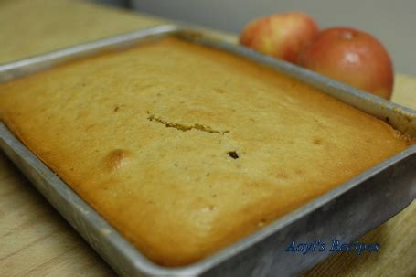apple raisin cake aayis recipes