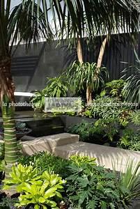 la phototheque les plus beaux jardins massif exotique With photos de bassins de jardin 11 installation pergola et claustra de jardin
