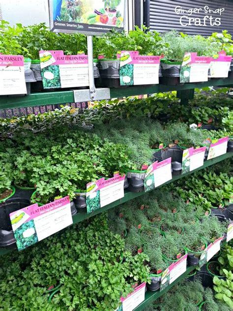 home depot garden project ideas home decor ideas