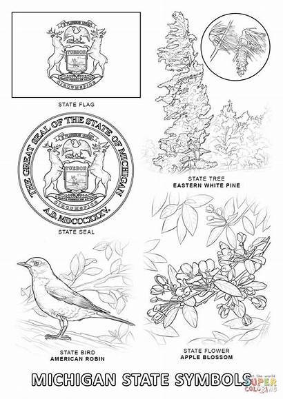 Coloring Michigan State Symbols Pages Printable Flag