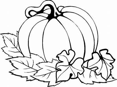 Pumpkin Coloring Thanksgiving Pages Easy Fall Printables