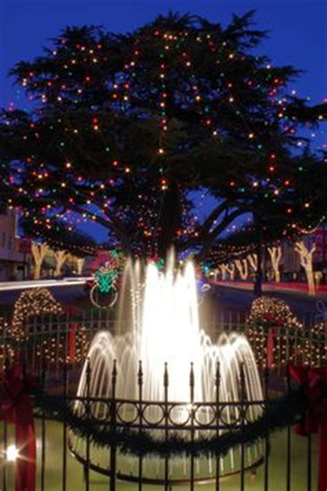forest city christmas lights wake forest nc forests and wake forest north carolina on
