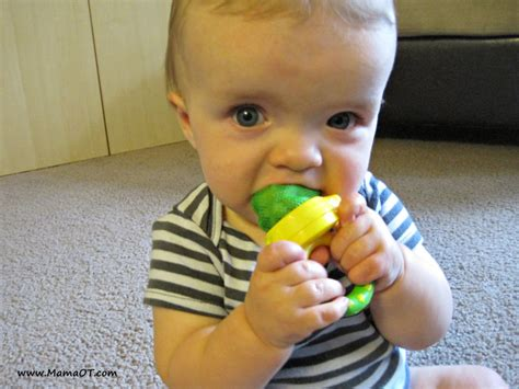 Use Fresh Food Feeders To Introduce Solid Foods To Baby