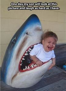 shark attacks boy - Dump A Day