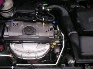 Peugeot 206 Essence : reglage culbuteur peugeot 206 essence ~ Medecine-chirurgie-esthetiques.com Avis de Voitures