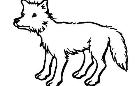 simple  drawings  animals clipart library
