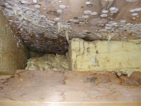 Ofenwärme In Andere Räume Transportieren by Innenraumbelastungen Durch Luftundichtigkeiten In Geb 228 Uden