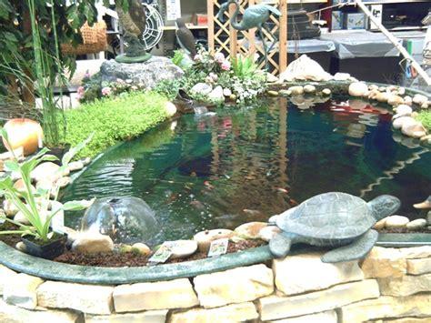 decoration bassin poisson exterieur visite du magasin sarl aqua95