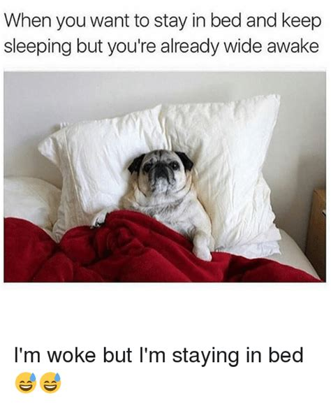 Stay In Bed Meme - when you want to stay in bed and keep sleeping but you re already wide awake i m woke but i m