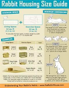 Rabbit Hutch Plan