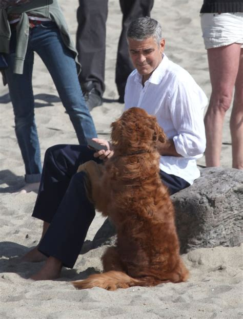 George Clooney Photo Shoot Pictures With a Dog | POPSUGAR ...