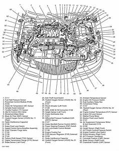 98 Lincoln Continental Engine Diagram  U2022 Wiring Diagram For