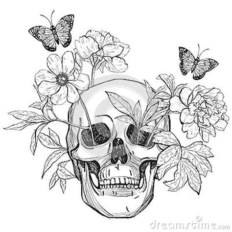skull flowers  butterfly stock vector image