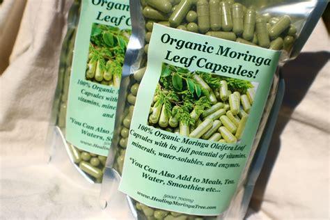 moringa bulk leaf capsules organic pack 700mg healingmoringatree p245