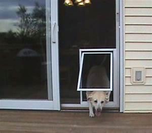 best screen doggie door design latest door stair design With best dog door for security