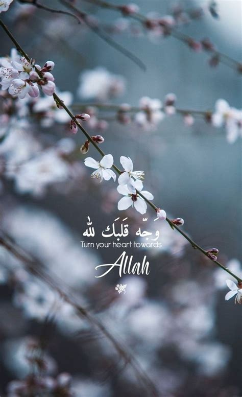 pin  purploove  aesthetic wallpaper quran quotes