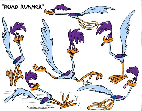 Road Runner Cartoon Wallpaper