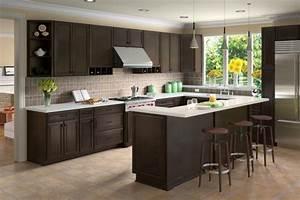 Espresso kitchen cabinets trendy color for your kitchen for Kitchen cabinet trends 2018 combined with albums photos papier