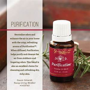 Purification essential oil Young Living | Essential Oils ...