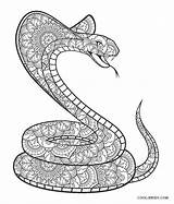 Snake Coloring Pages Printable Fangs Popular sketch template