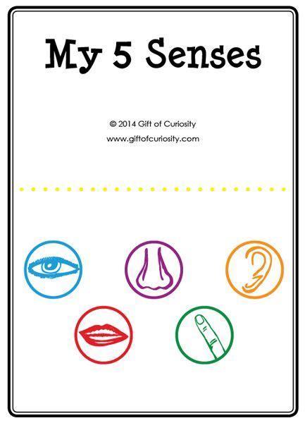 my five senses activities free five senses printables 364   320a65aeff9d6b2fe4bf0c32264dc315 five senses preschool senses activities
