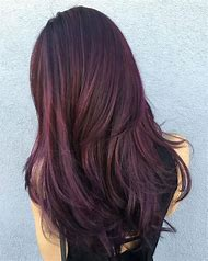Dark Brown Hair Color with Purple Highlights