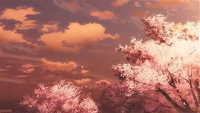 Cherry Blossoms Anime Scenery Durarara Animated Favim