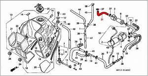 Oem Honda Fuel Tube B - Rd07  07a  1993