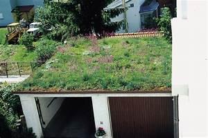 Extensive Dachbegrünung Pflanzen : eine extensive dachbegr nung senkt energiekosten ~ Frokenaadalensverden.com Haus und Dekorationen