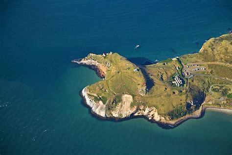 Otago Peninsula Taiaroa Head Albatross Colony See More
