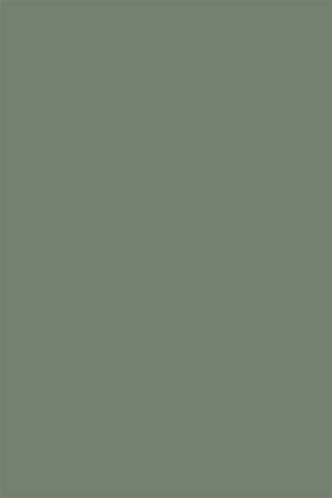 muted green paint colors paint color ideas