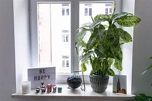 Fensterbank Deko Kinderzimmer : fensterbank deko ein kleiner dschungel in unserer wohnung josie loves ~ Markanthonyermac.com Haus und Dekorationen