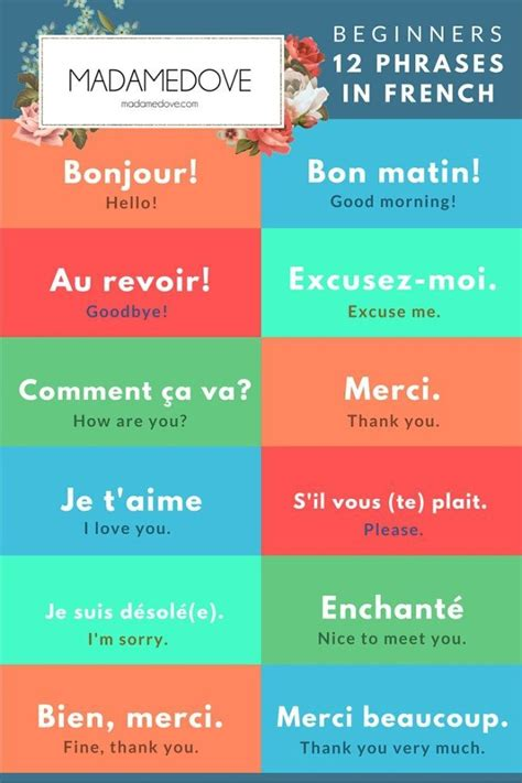 12 phrases in French for beginners// 12 phrases en ...