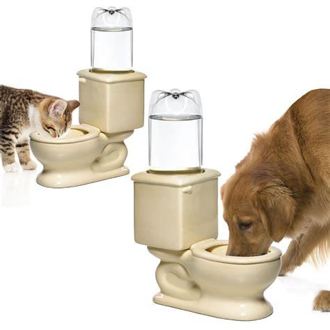 toilet bowl of water toilet pet water bowl stuff you should