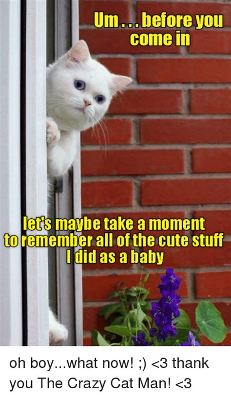Crazy Cat Man Meme - 25 best memes about crazy cat man crazy cat man memes