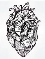Lungs Human Drawing Heart Coloring Printable Clipartmag sketch template