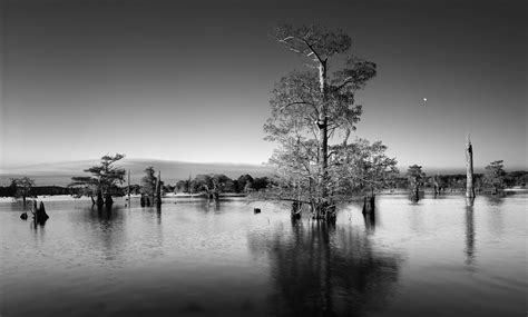 black  white landscape photography   hd wallpaper