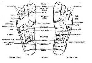 Bottom of Feet Diagram