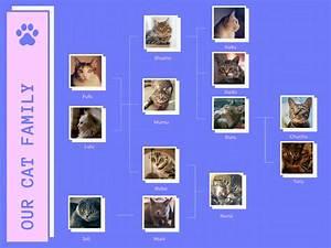 Free Online Family Tree Maker  Design A Custom Family Tree