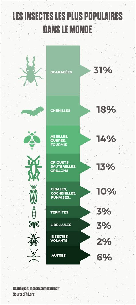 Quels Sont Les Insectes à Manger Les Plus Populaires