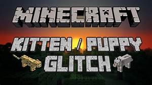 John 2 0 Minecraft : minecraft kitten puppy glitch youtube ~ Medecine-chirurgie-esthetiques.com Avis de Voitures