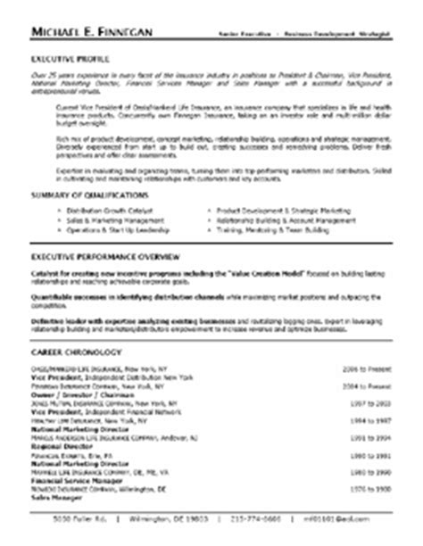 Hybrid Executive Resumes by Sles Executive Resumes Professional Cvs Career Change Executive Resume Services