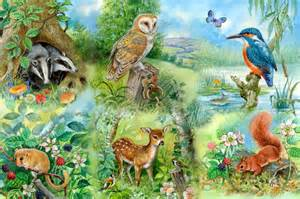 house planner free nature study meadow collection 250 big puzzle by