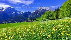 Beautiful Green Mountains Wallpaper | www.pixshark.com ...