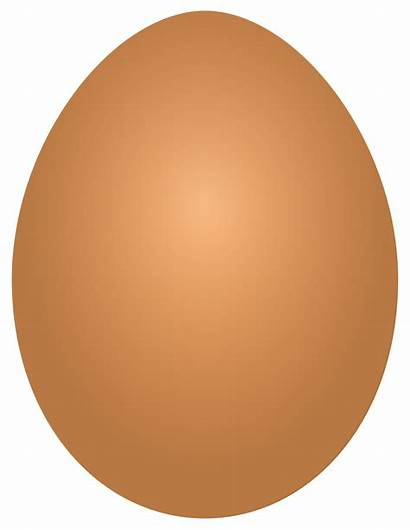 Egg Eggs Clipart Brown Transparent Oeuf Clip